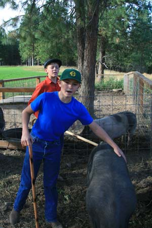 Photo by Marcy Stamper Dusty (in blue) and Grey (in red) Patterson have raised pigs for their family in the past, but this is the first year they're taking them to the county fair. Dusty said it's fun seeing them grow up.