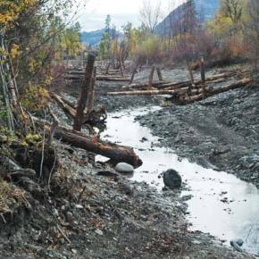 Project restores Methow River's historic main channel near Twisp