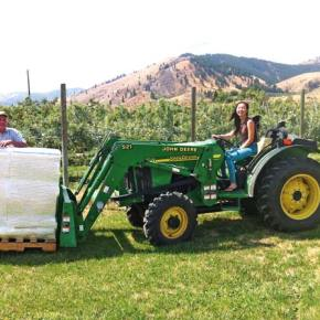 A solar-powered organic cidery comes into its own