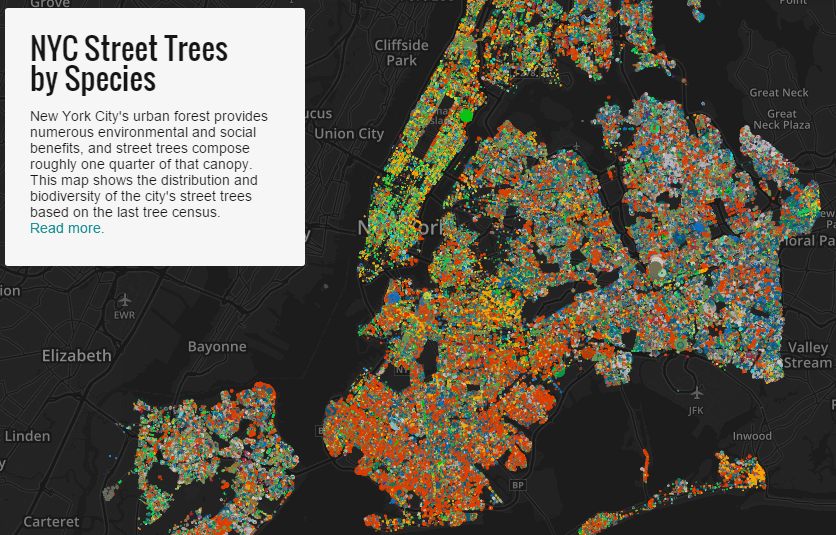 Based On Data From New York City S Tree Census Brooklyn Developer Jill Hubley Plotted 600 000 Of New York City S Street Trees Each One Color Coded By