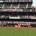 mets crowd july 16 1pm