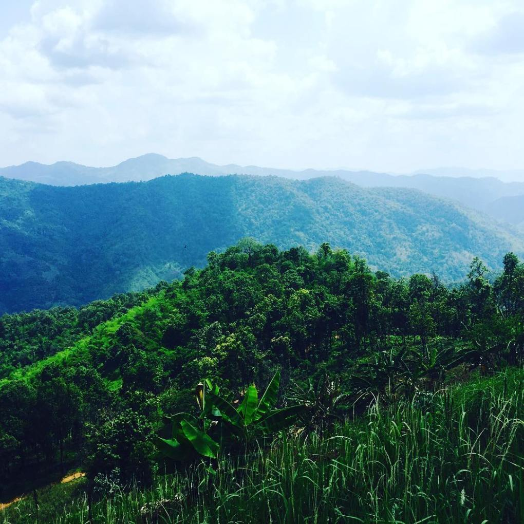 These rolling hills of ChiangMai Thailand got me feeling somehellip
