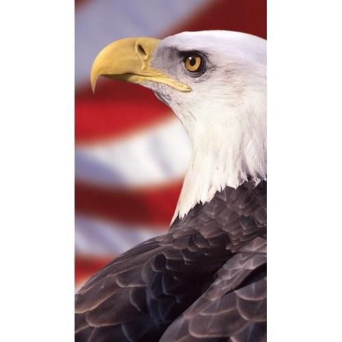 Medium Crop Of Bald Eagle Wallpaper
