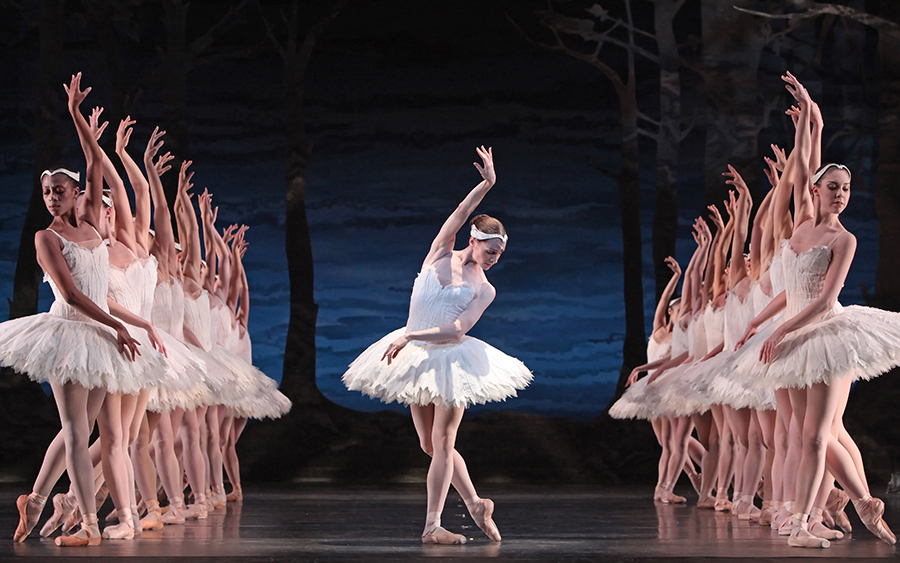 swan-lake-the-miami-city-ballet-11