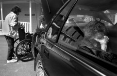 Kathryn shields her eyes from the confusing surroundings while Shirley and her sister Kay Cassoni, get their mother's wheelchair ready for a visit to the Doctor's office. Kathryn is usually more confused after returning home from a trip.