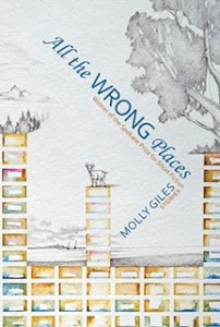 """All the Wrong Places,"" short stories by Molly Giles"