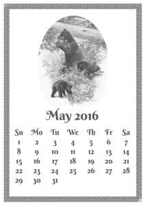 may-1333486_640
