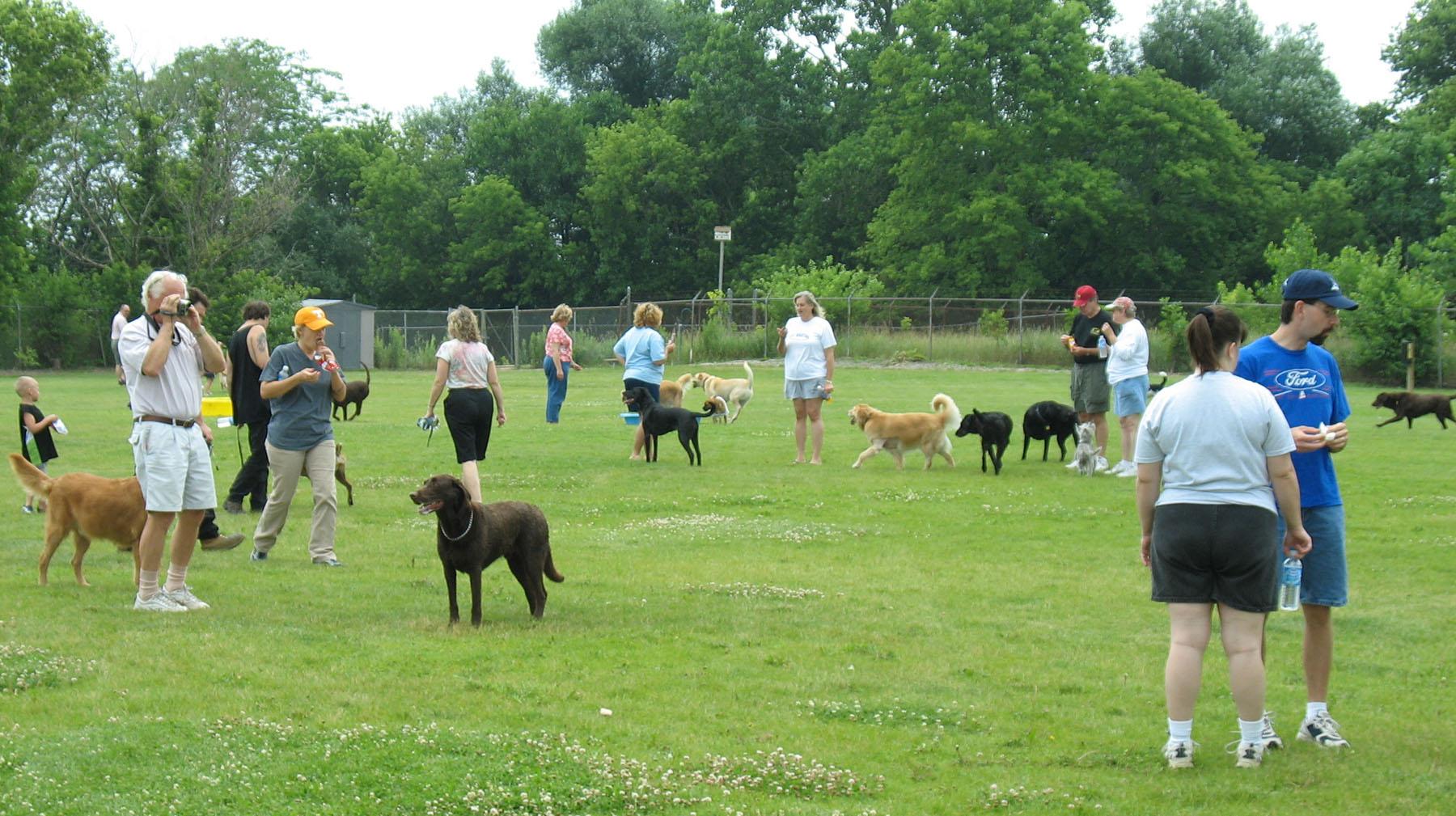 Dog Park With Grass Near Me