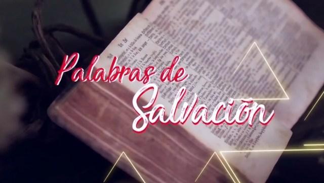 PALABRAS DE SALVACIÓN 12 DE AGOSTO