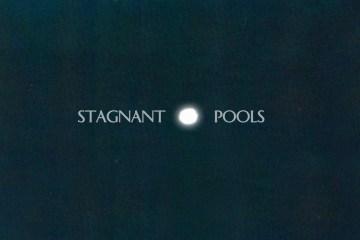 stagnant_pools
