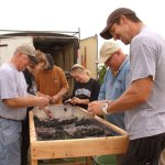 IMG_0044-Dallas-Clark-and-others-sort-grapes-during-harvest