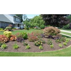 Small Crop Of Pictures Of Yards Landscaped