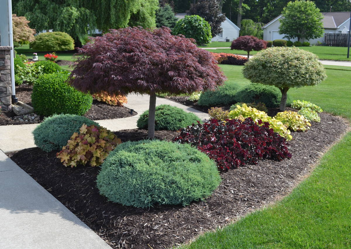 Mesmerizing Outside Front Yard Small Yards Images Images Landscaping Ideas Landscape Design Idea A Landscaping Ideas Landscaping Ideas outdoor Images Of Landscaping Ideas