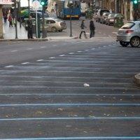ESPAÑA, Las multas puestas en zona azul son todas nulas de pleno derecho