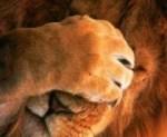 Επιστροφή του Save As… στο Lion