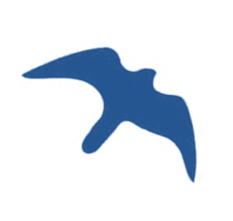 BF Logo 2