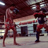 Muay Thai Blog and Travel Blog List