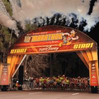 "Race Review: 2015 Walt Disney World Half Marathon (1/10/2015), or: ""Same as it ever was..."""