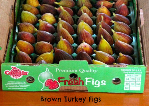 Резултат с изображение за brown turkey fig
