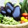 夏バテの症状は?原因は?夏バテに夏野菜が効くってほんと?