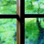 雨のときの換気がカビの原因になる?部屋の臭い対策はあるの?