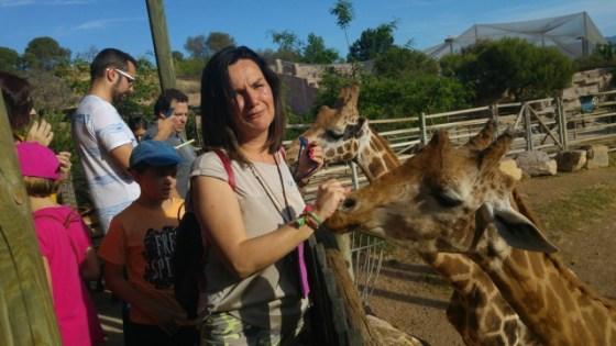 La jirafa quería también mi mano agggg