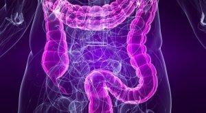 digestionpic