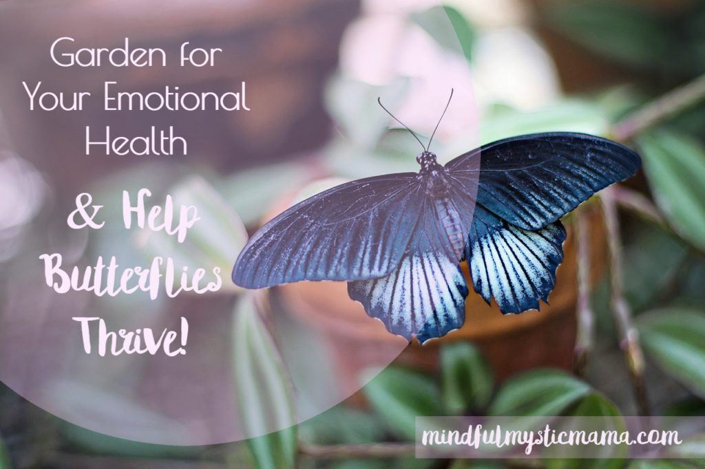 Garden for Your Emotional Health & Help Butterflies Thrive