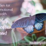 Garden for Your Emotional Health & Help Butterflies Thrive