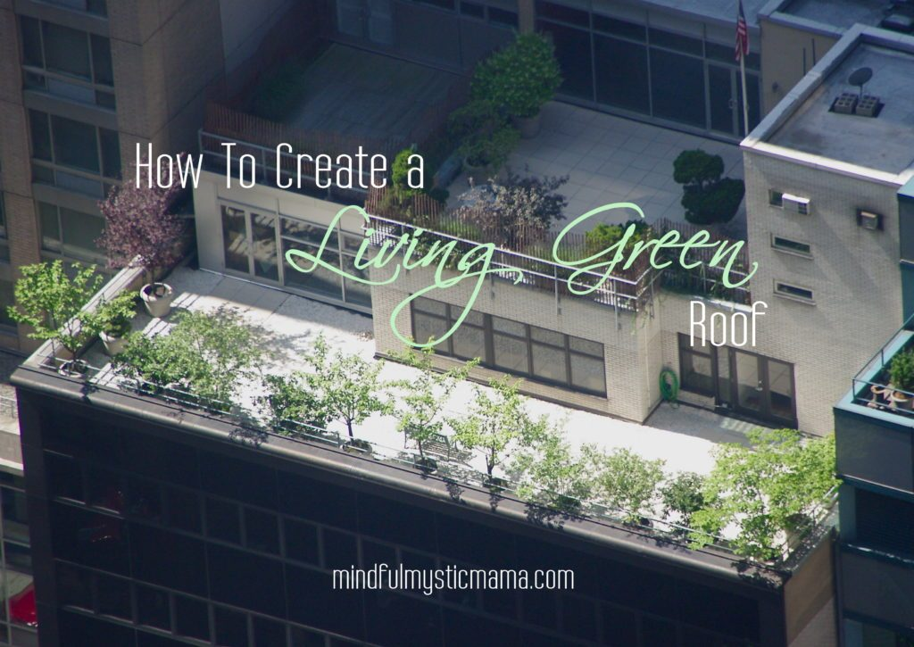 how to create a living green roof