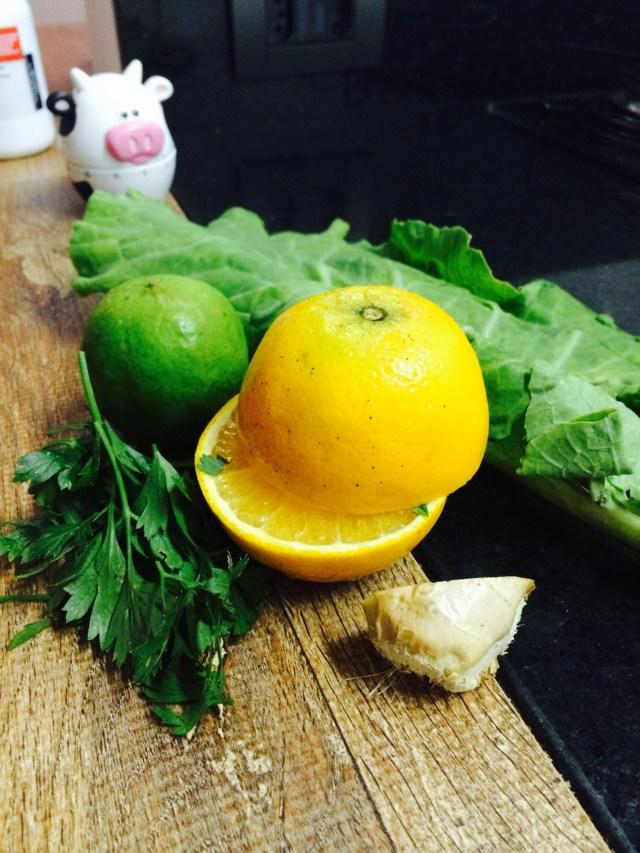 suco verde vania castanheira