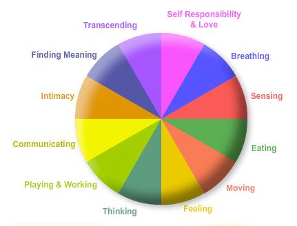 12 dimensoes do Coaching de saude e bem-estar_wellness