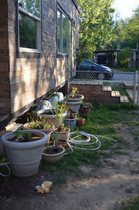 My 'garden'  I'll be working on getting these planted soon!