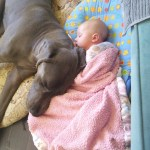 She snuggles with D for naptime
