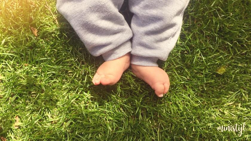 Earthing: je lichaam aarden | gezondheid