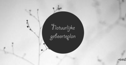 Geboorteplan – voor een natuurlijke bevalling