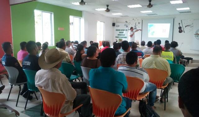 Ses tomaran acciones para disminuir la deforestación en el Putumayo