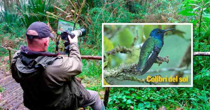 El negocio del avistamiento de aves toma vuelo