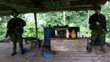 Hallado laboratorio para el procesamiento de coca en el sur del país