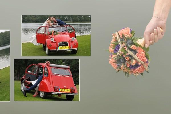 http://i2.wp.com/miranda-fotografie.nl/wp-content/uploads/2016/10/l3.jpg?fit=600%2C399