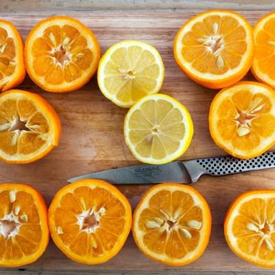 Vivien Lloyd – Marmalade Day