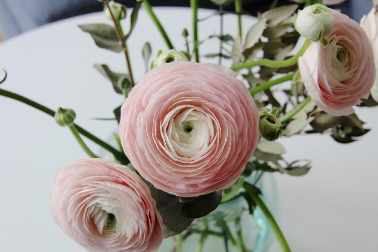 flower market - 14
