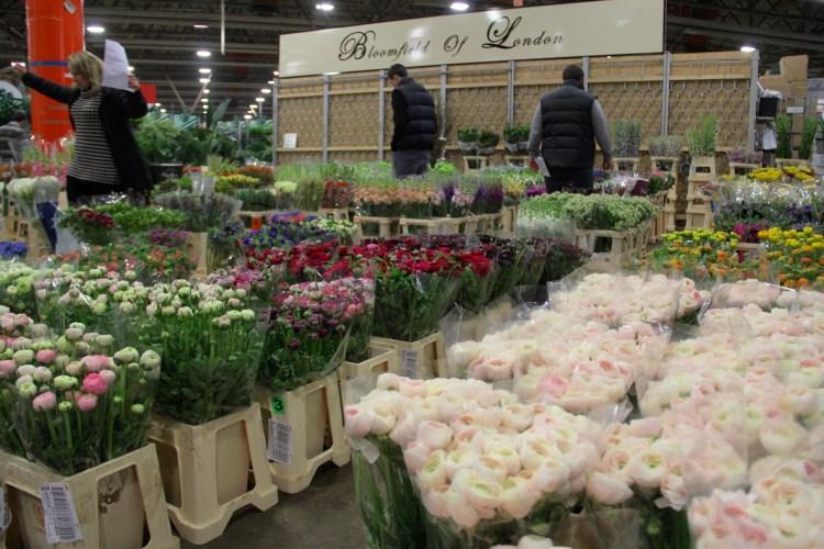 flower market - 8