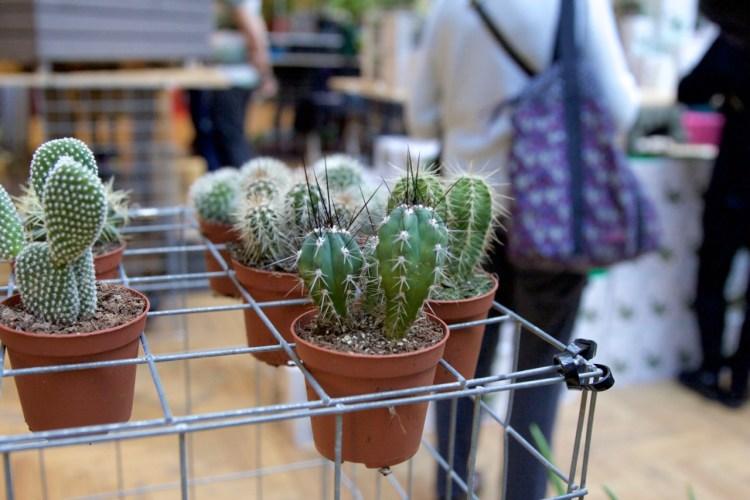 urban-gardens-12