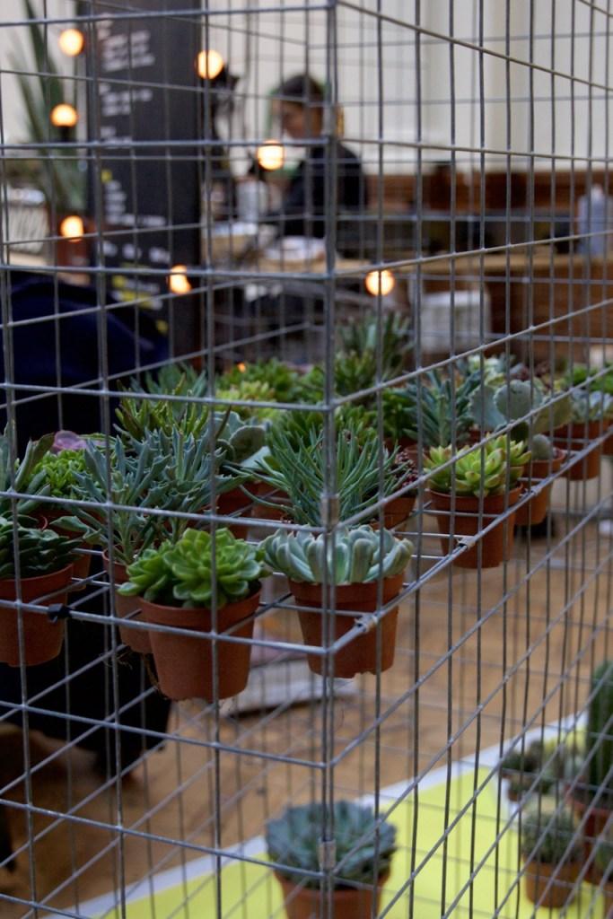 urban-gardens-9