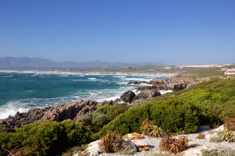 south-africa-12-16-34