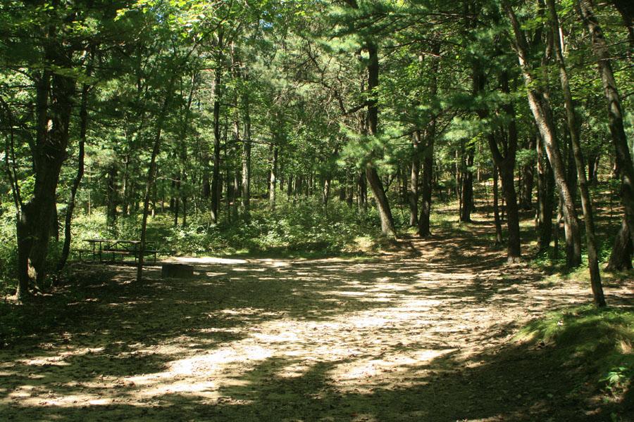 Site 87