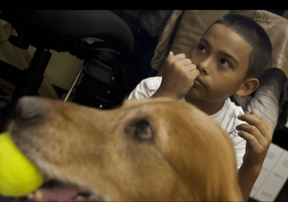 Thirty years ago the San Francisco SPCA began its Animal Assisted Therapy Program. At Bryant Elementary School, Puppy Dog Tales brings pupils with reading challenges together with Jake, a golden retriever.