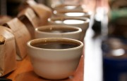 Cups ready for tasting at Four Barrel