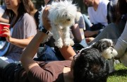 A man holds his dog in Dolores Park.